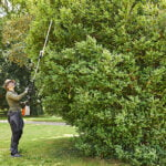 Stihl HLA 135 Cordless Long Reach Hedge Trimmer
