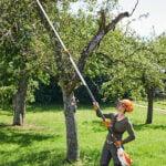 Stihl HTA 135 Cordless Pole Pruner