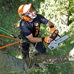 Stihl MS 194 T Arborist Chainsaw