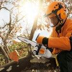 Stihl MS 151 TC-E Arborist Chainsaw